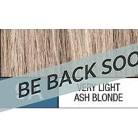 9A VERY LIGHT ASH BLONDE..
