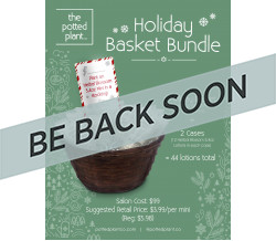 POTTED PLANT HOLIDAY BASKET W/ TRAVEL SIZE