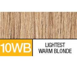 10WB  LIGHTEST WARM BLONDE