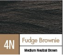 D4N FUDGE BROWNIE