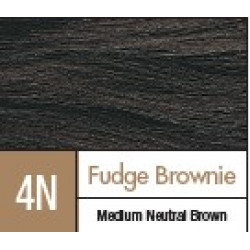 D4N FUDGE BROWNIE..