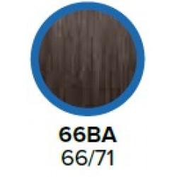 COLOR XG COVERSMART 66BA..