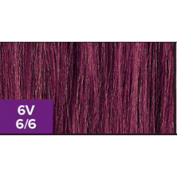 XG Color 6V..