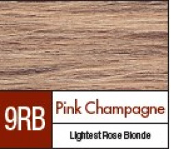 D9RB PINK CHAMPAGNE