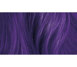 POP XG Royal Purple